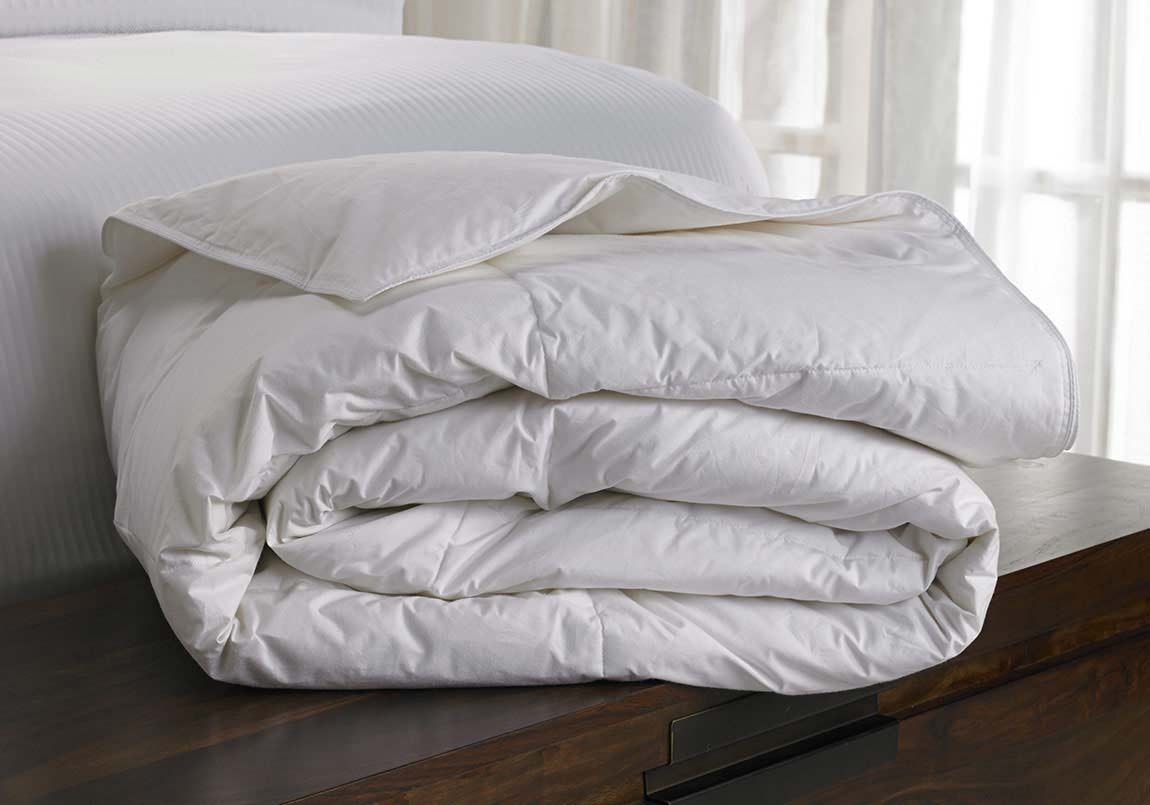 bedding and bed top where can i buy pillows feather hotel bugs westin of pillow goose with down gallery